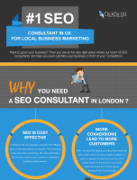 #1 SEO Consultant in UK for Local Business Marketing
