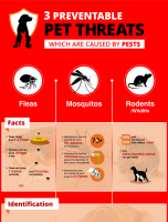 3 Preventable Pet Threats Which Are Caused By Pests