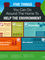 5 Things You Can Do Around the Home to Help the Environment