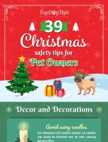 39 Christmas Safety Tips for Pet Owners