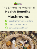 The Emerging Medicinal Health Benefits of Mushrooms