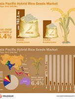 Hybrid Rice Seeds Market Witnessed CAGR of Over 6.4% During 2017-2026