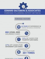 Expert Resume Infographic