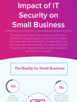 The Impact of IT Security on Small Business