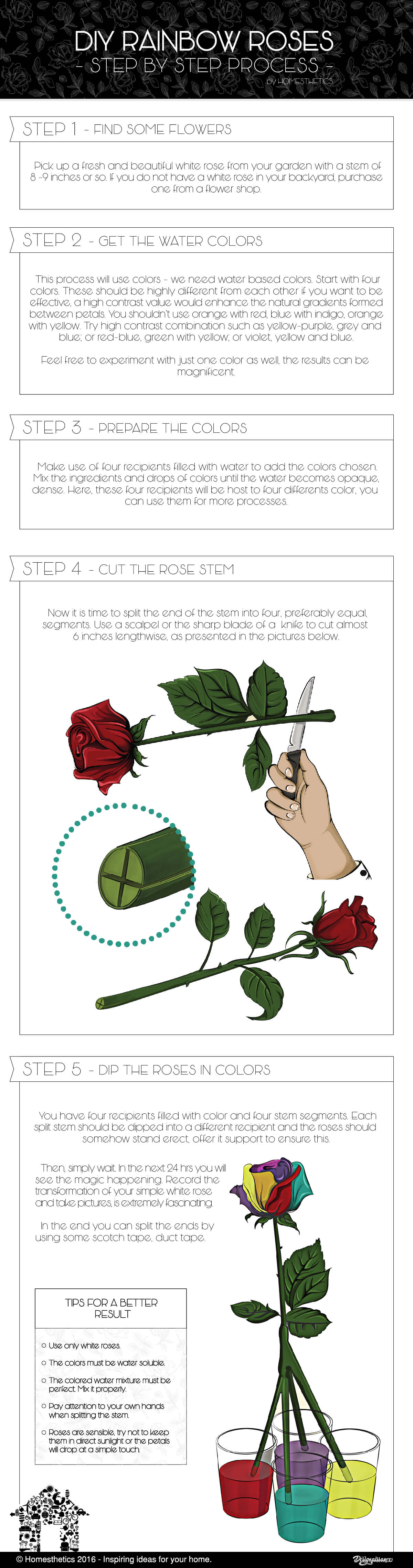 rainbow-roses-infographic