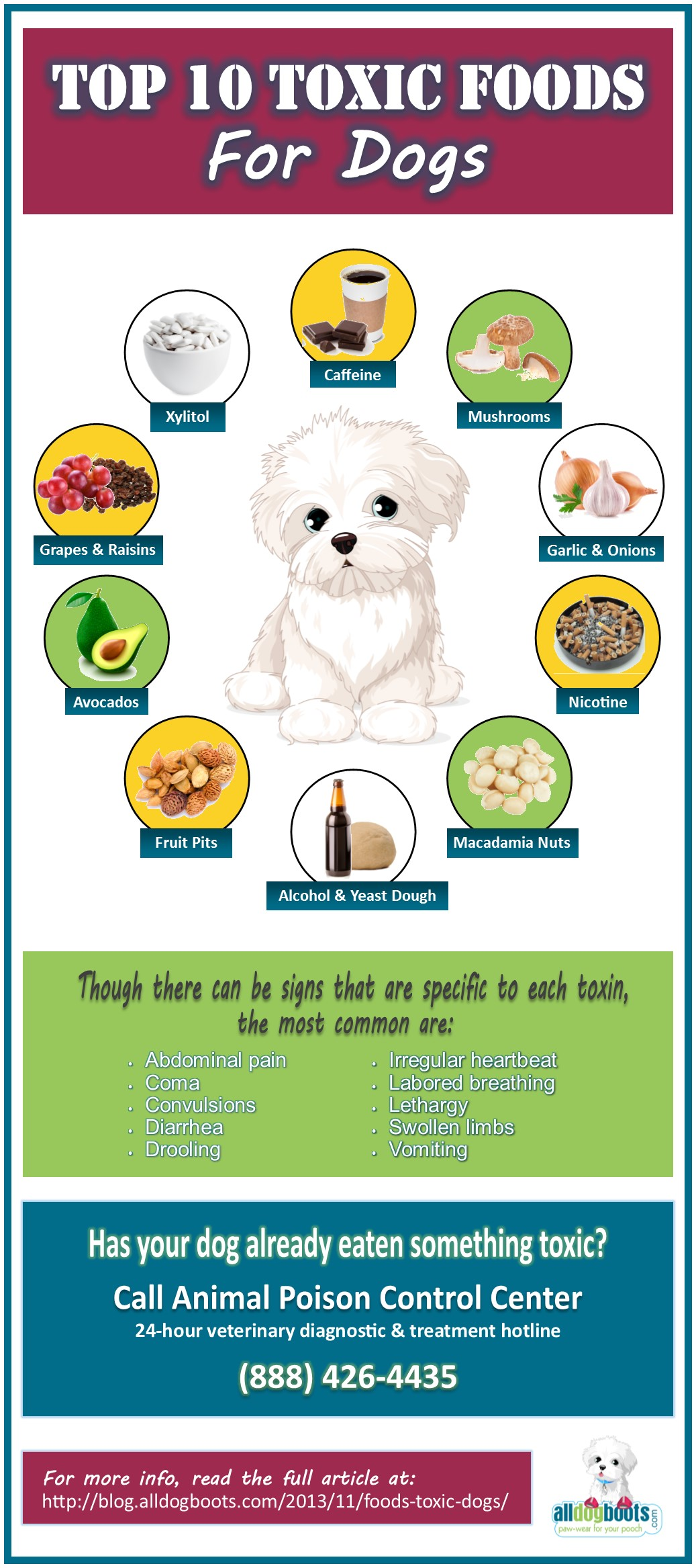 toxic-foods-dogs